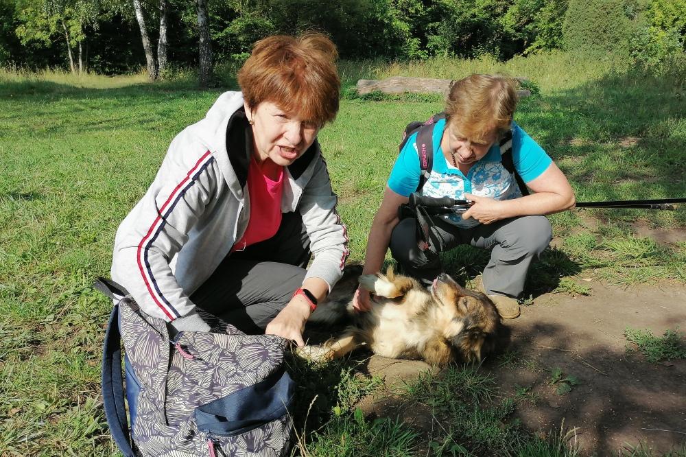 В парке любительницы ходьбы подкармливают бездомных животных и обитателей зоопарка.