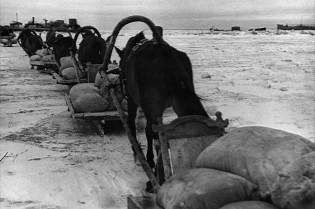 Продовольственный обоз из «партизанского края» прибыл в блокадный Ленинград 29 марта 1942 года.