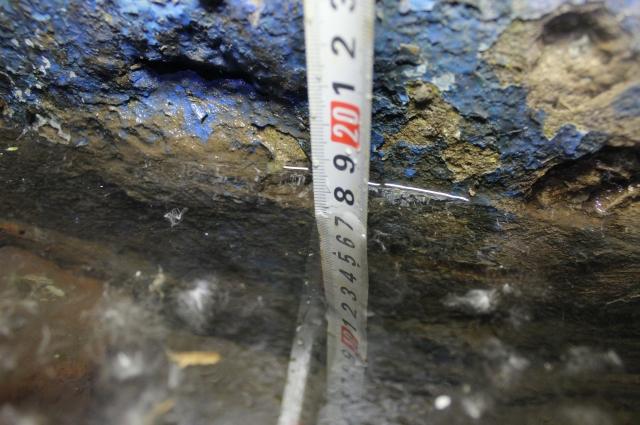 Предыдущие две недели вода в подъезде поднималась до 20-30 сантиметров.