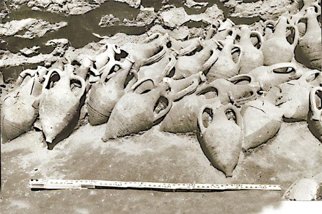 При раскопках вТанаисе нашли огромное количество античных амфор.