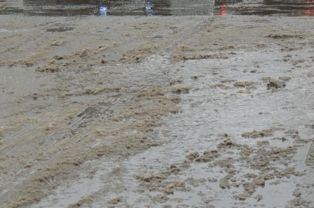 Реагенты превращают снег в грязь и лужи