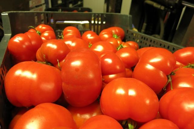 помидоры можно консервировать и без уксуса.