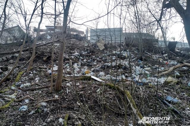 Некоторые жители овражных улиц считают возможным выкидывать мусор за забор.