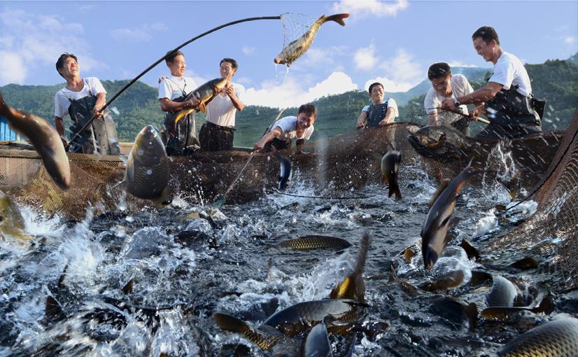 В отдаленной от моря Провинции Чаган КНДР