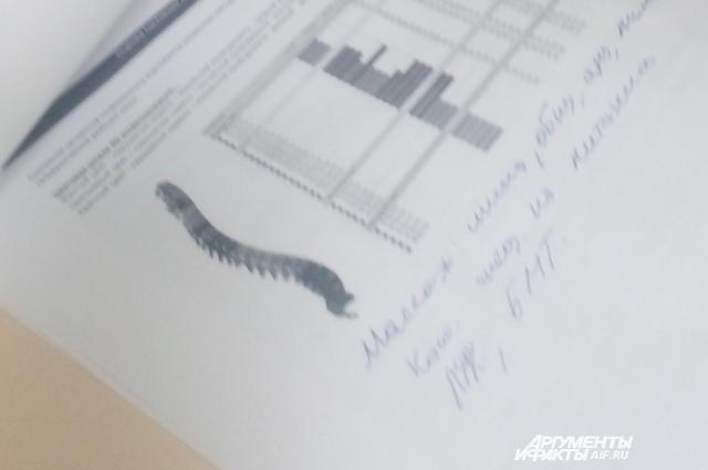 Распечатка компьютерной диагностики.