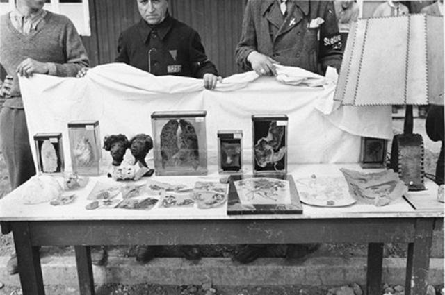 Выставка человеческих останков и артефактов, извлеченных американской армией из лаборатории патологии, управляемой СС в Бухенвальде. Эти предметы использовались в качестве свидетельства зверств СС в судебном процессе по делу о военных преступлениях в Бухе