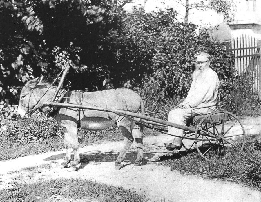 Фет в Воробьёвке, 1890 г.