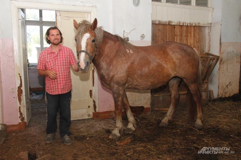 Спасти лошади Данилу помогли знакомые.