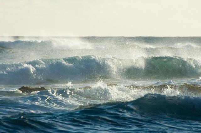 «Море - великий примиритель». Ф.Искандер, писатель.