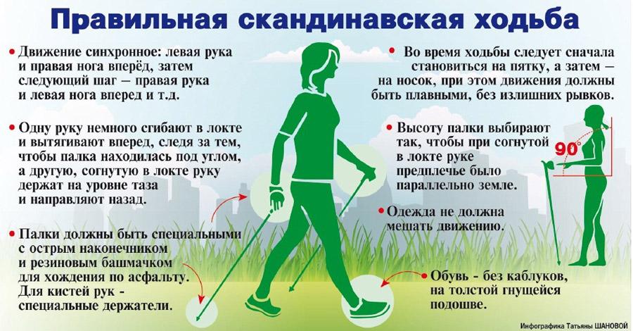 Инфографика Татьяны Шановой