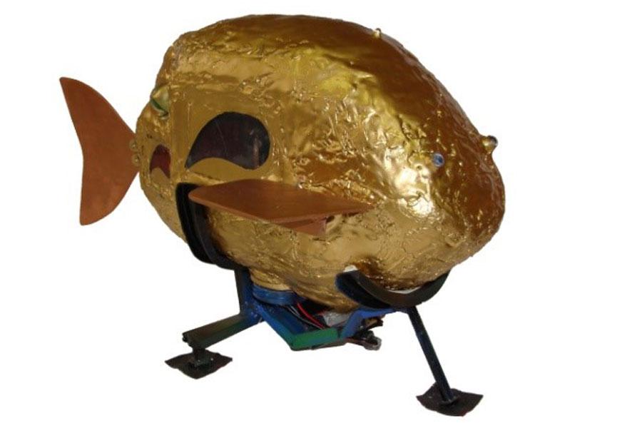 Подводный робот бионического типа.