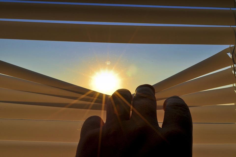 жалюзи, жара, лето, солнце,