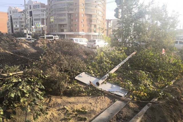 Останки деревьев свалены в одну кучу.