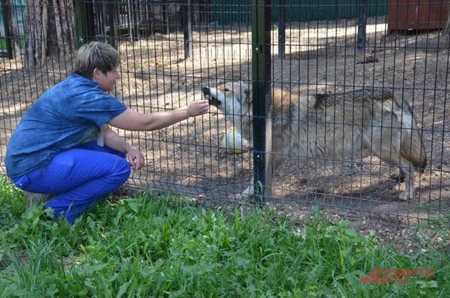 Наталья не боится животных: они всё понимают
