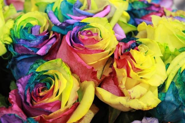 Радужные розы можно сделать и в домашних условиях.