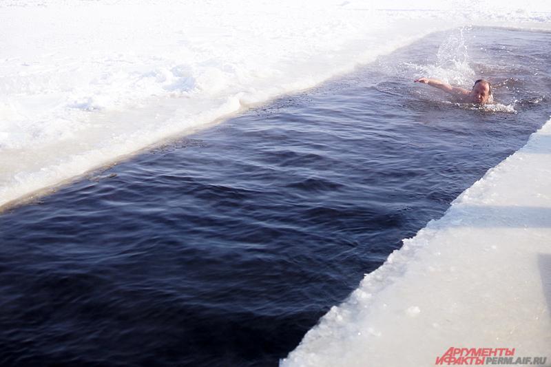 Пермские моржи