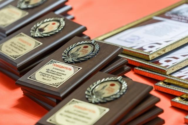 По итогам 2017 года награды вручены ещё в 16 номинациях.