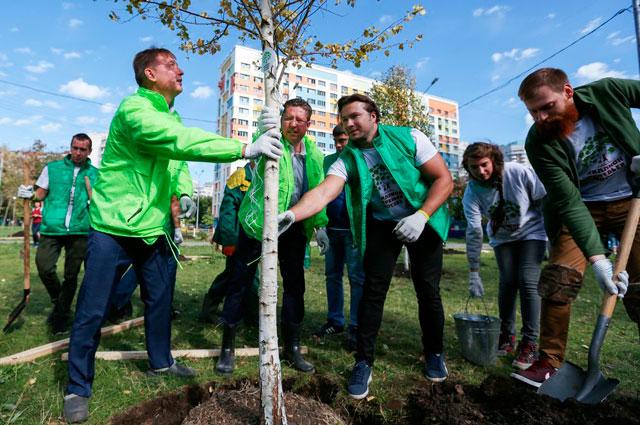 Акция «Миллион деревьев» началась 23 сентября и продлится до конца октября.