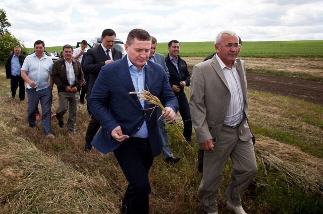 Крепкие фермерские хозяйства в Волгоградской области создаются благодаря поддержке областных властей.