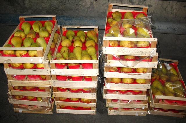 Груши, фрукты, санкции