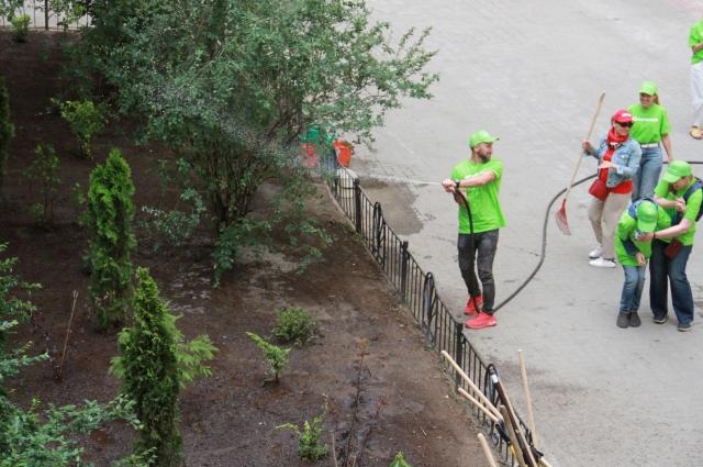 В рамках акции озеленили двор по улице Рубинштейна, 3.