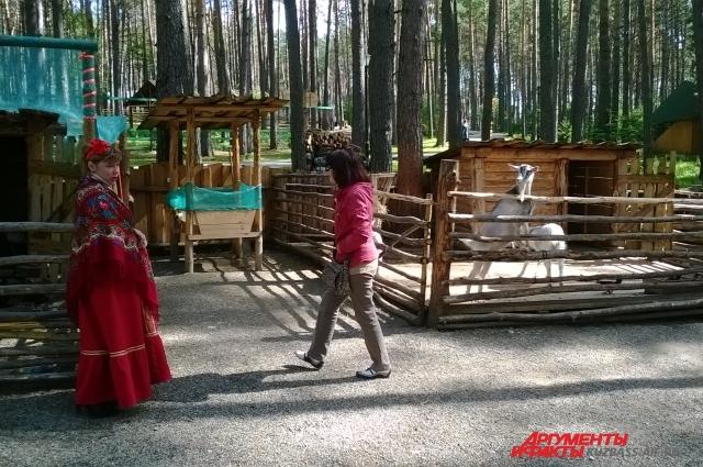 Музей-заповедник возле деревни Писаная, это еще и зоопарк.