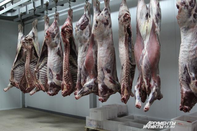 Мясокомбинаты России для изготовления колбасы используют привозное мясо из Бразилии и Чили.