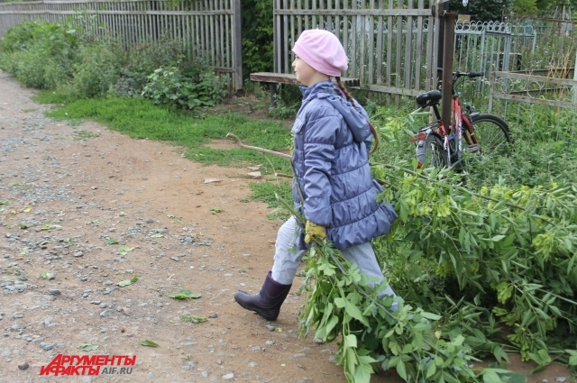 Дети помогают взрослым