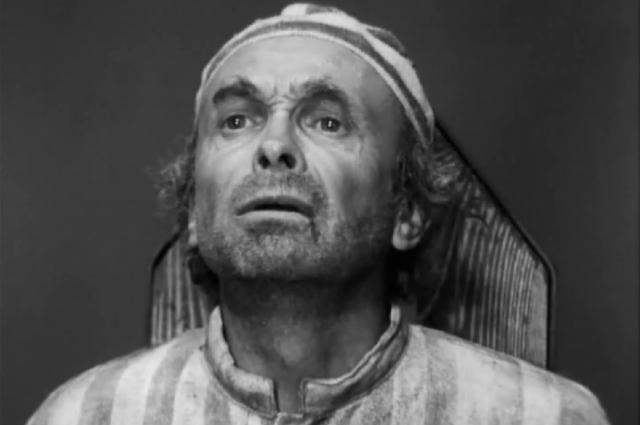 Юрий Катин-Ярцев в роли астронома, «Семнадцать мгновений весны» (1973)