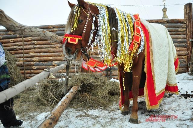 В Большеречье могут и на лошади покатать...