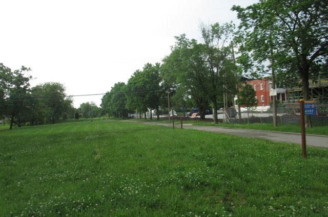 Зеленый путь вдоль великих рек - это поля, деревья и велодорожки.