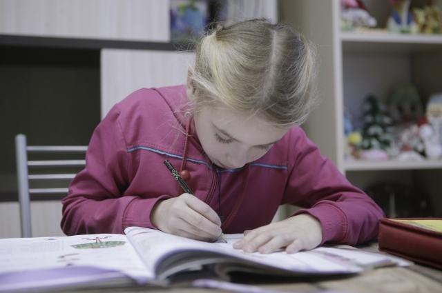 Дистанционное обучение требует от школьников организованности