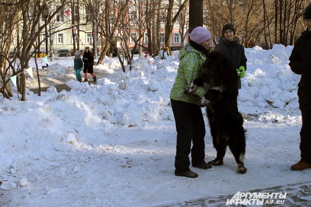 Татьяна и её собака Визави с радостью принимают участие в обнимашках.
