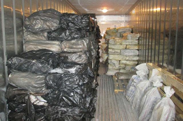 1,5 тыс. случаев незаконной добычи рыбы - за 6 мес. 2016 г.