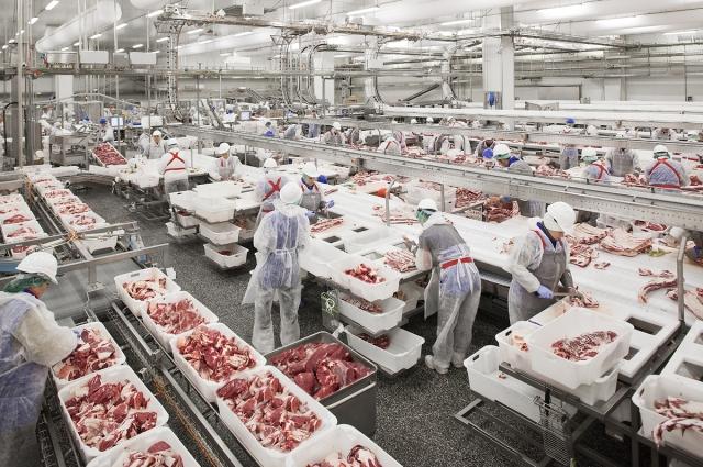 Рост производства обусловлен запуском  новых животноводческих ферм и  дополнительных  мясоперерабатывающих линий.