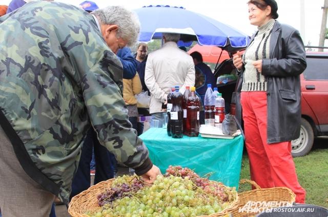 Ростовская область является самым северным регионом по произрастанию промышленного винограда.