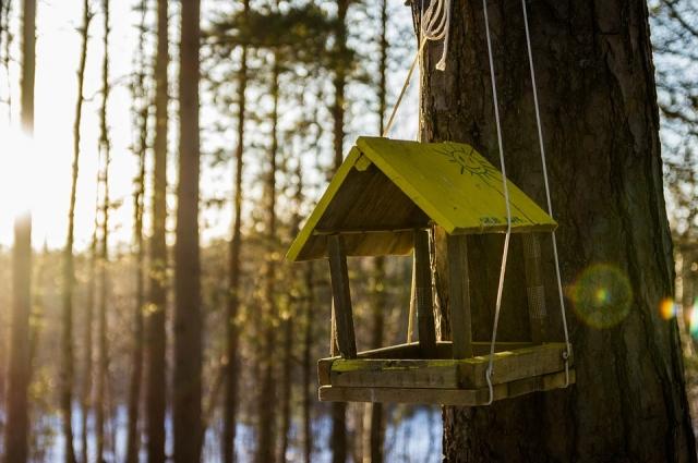 Из дерева можно сделать кормушку.