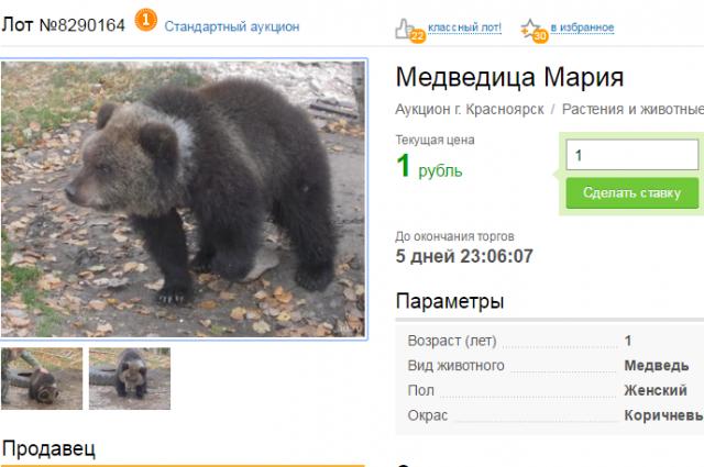 начальная цена лота - 1 рубль.