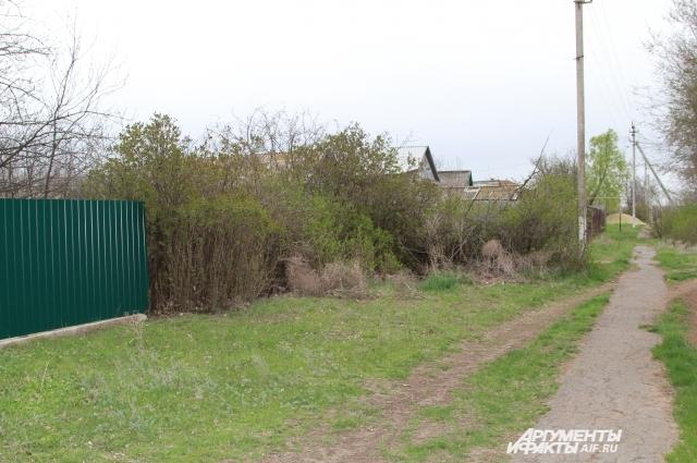 В Знаменке многие дома брошены, а у Степана – красивый зелёный забор.