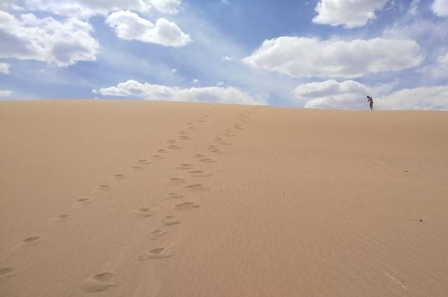 В Гоби можно услышать поющие пески.
