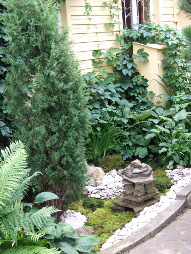Папоротники, хосты и даже мхи подходят для дизайна сада.
