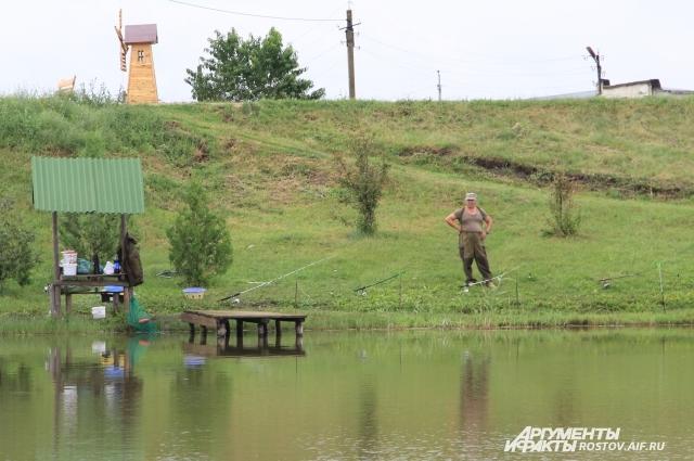 Зарыбленные пруды в селе Николаевка пользуются спросом у любителей платной рыбалки.