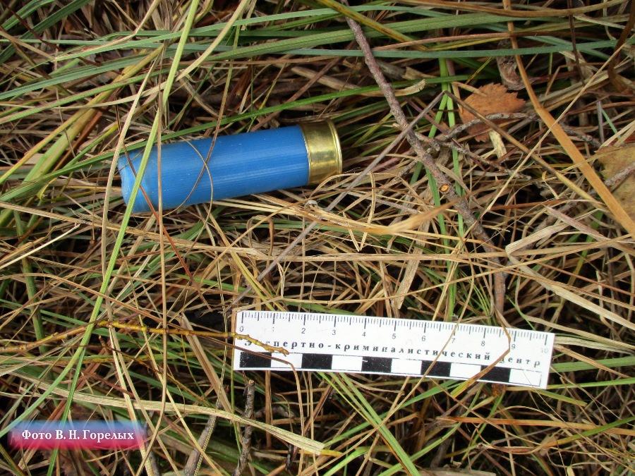 На месте преступления был найден патрон в пластиковой гильзе.
