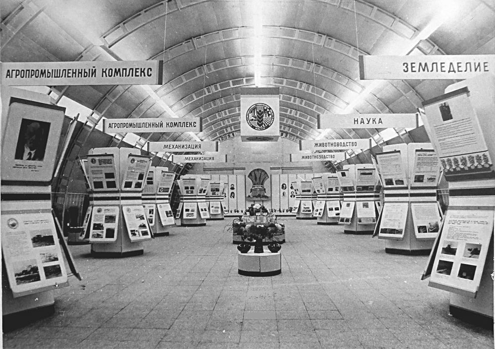 Сельскохозяйственная выставка в Новой Вилге
