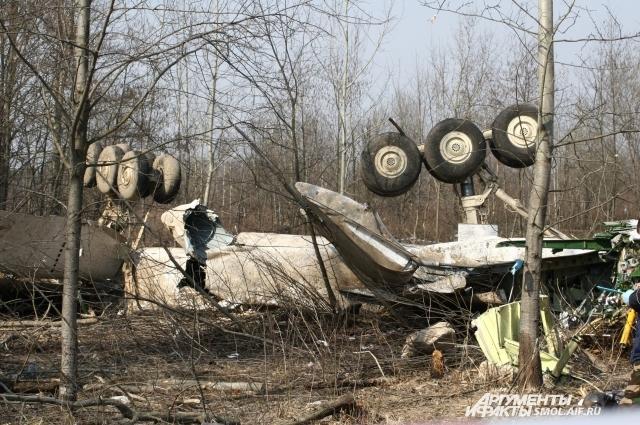 Место крушения Ту-154М под Смоленском