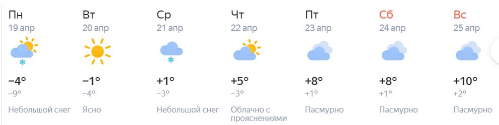 Погода нск