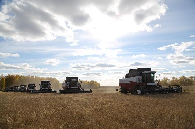 Агрохолдинг ЮбилейныйФото из архива агрохолдинга «Юбилейный».