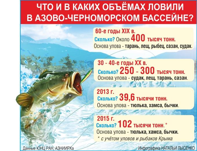 Закат рыбного дня, рыба, инфографика