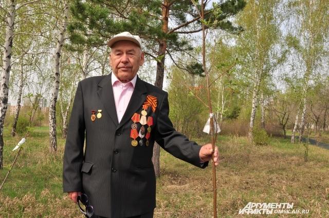 Ветеран и его рябинка.
