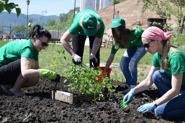 30 вакансий по озеленению разошлись еще весной.